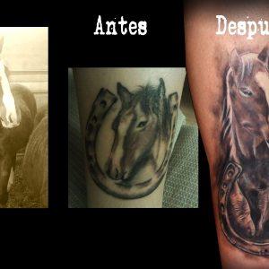 tatuaje cover tapado arreglo caballo herradura 13depicas.com