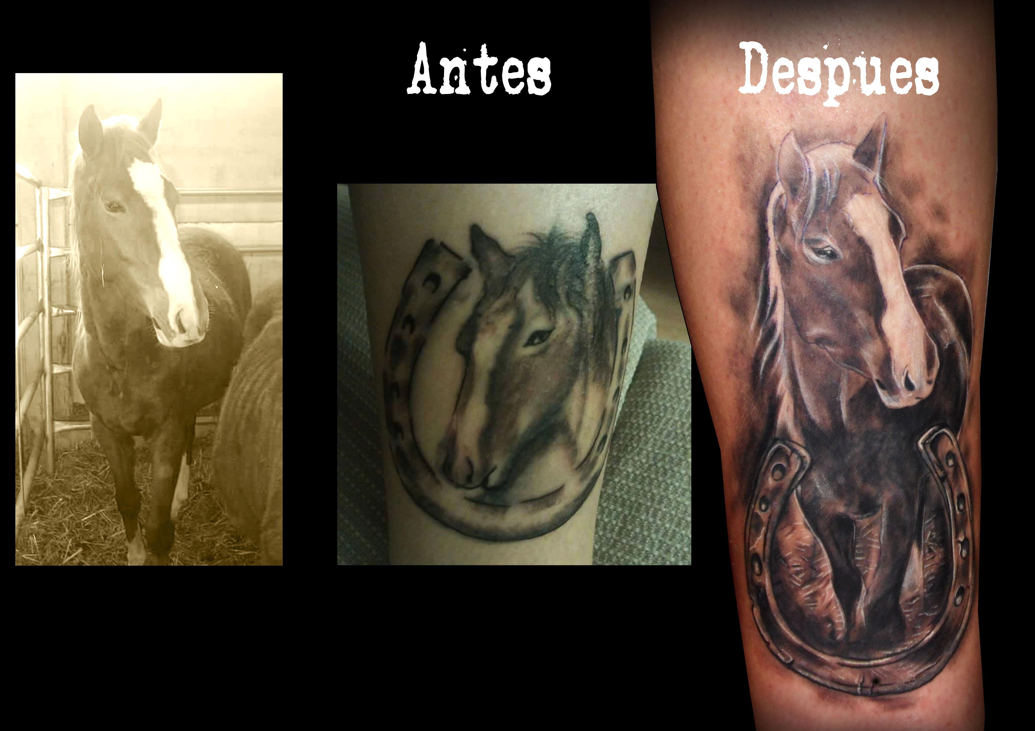 Tatuaje Caballo tatuaje cover caballo 13depicas ⋆ 13depicas♤studio tattoo