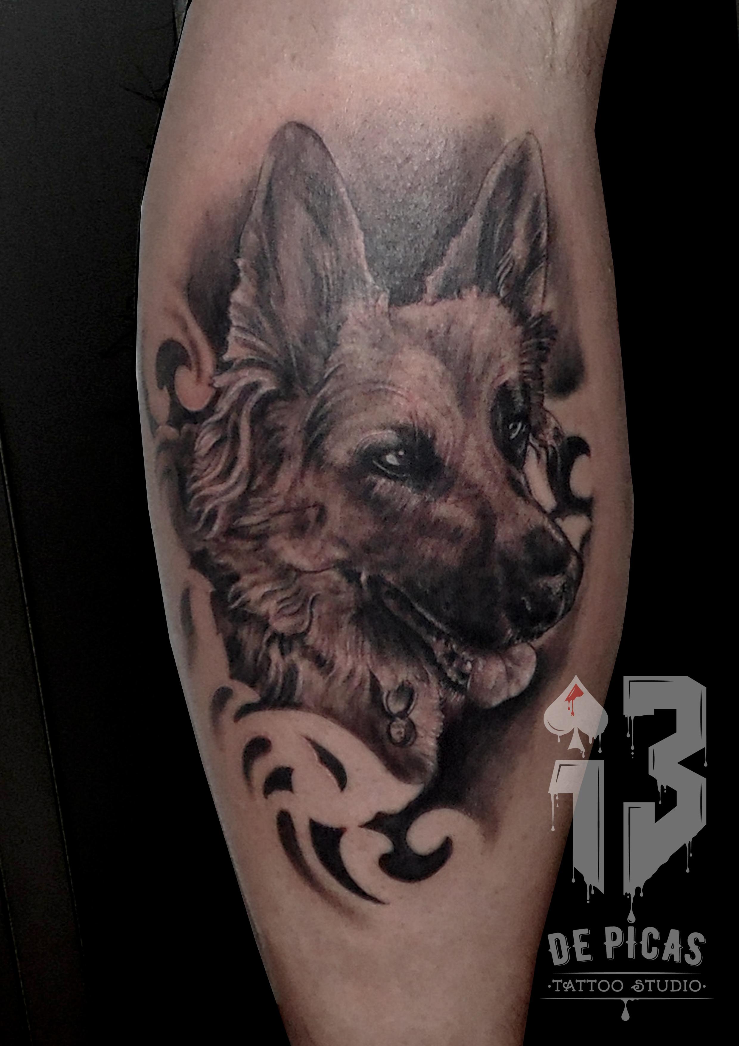 retrato perro mascota tattoo jaca huesca tatuaje realista valle sergio gemelo spain tatoist madein13 logo 13depicas trecedepicas