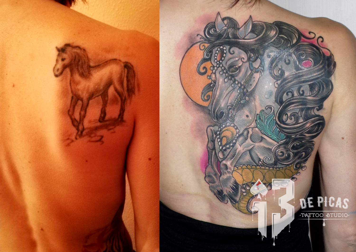 caballo cover up neotradicional color espalda tapado 13depicas Jaca Huesca