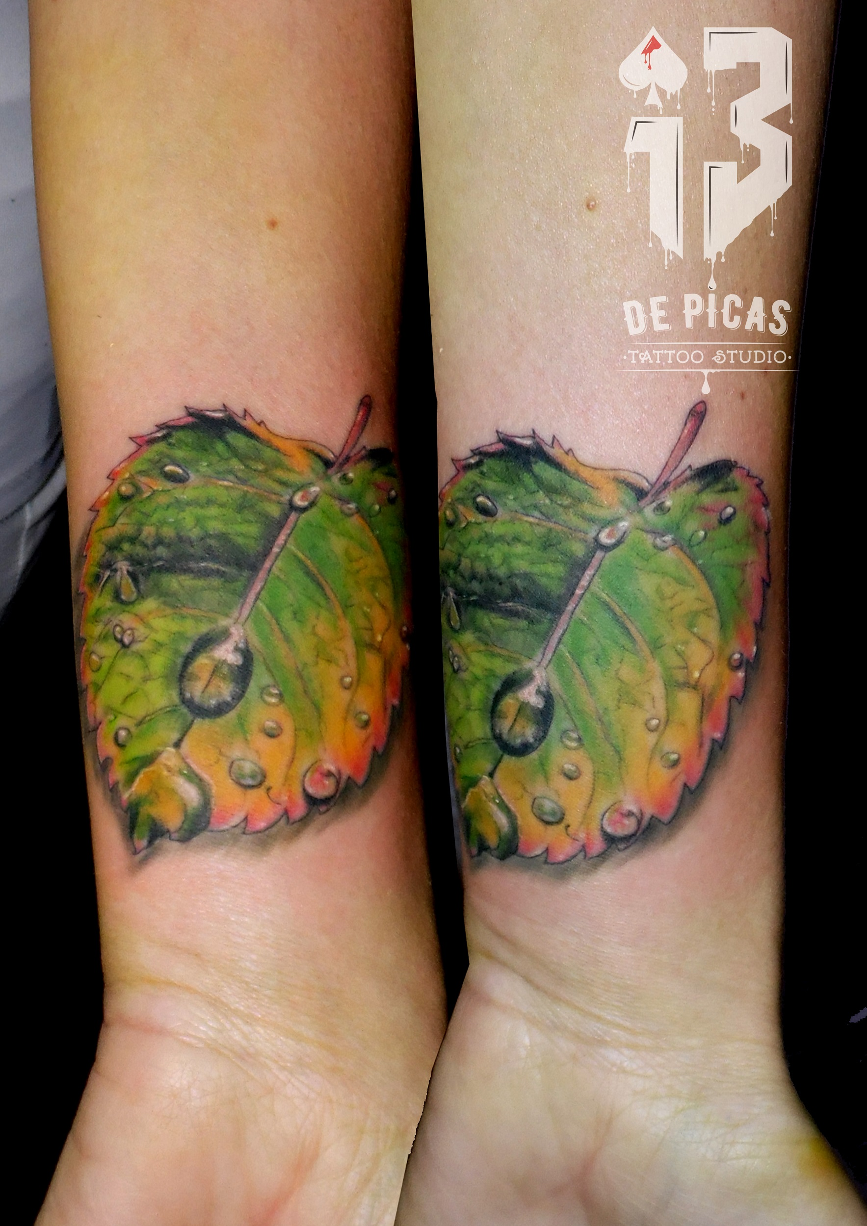 tatuaje tattoo realista color hoja gotas naturaleza arboles antebrazo 13depicas jaca huesca