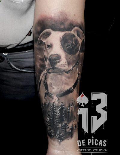 retrato-perro-logo-pitbull (Copiar)